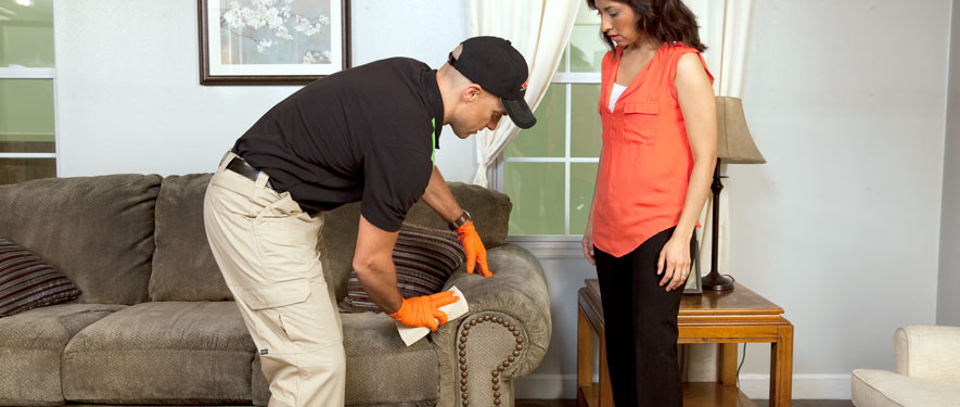 Eugene, OR carpet upholstery cleaning