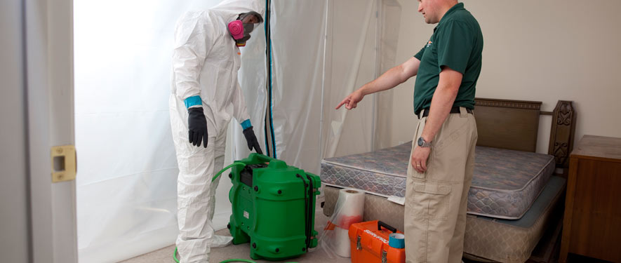 Eugene, OR mold removal process